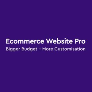 buy an ecommerce website
